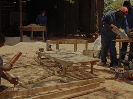Under My Umbrella Zambia Carpenters Drk