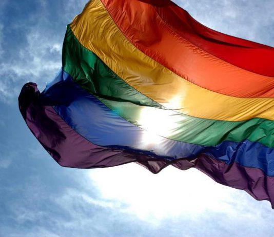 LGBT Rainbow Flag © 2008 Ludovic Berton (Wikimedia Commons)