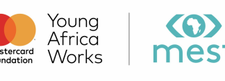 Young Africa Works