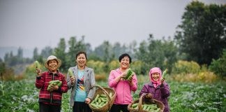 UN Women China Qinghai programme has benefited local women.