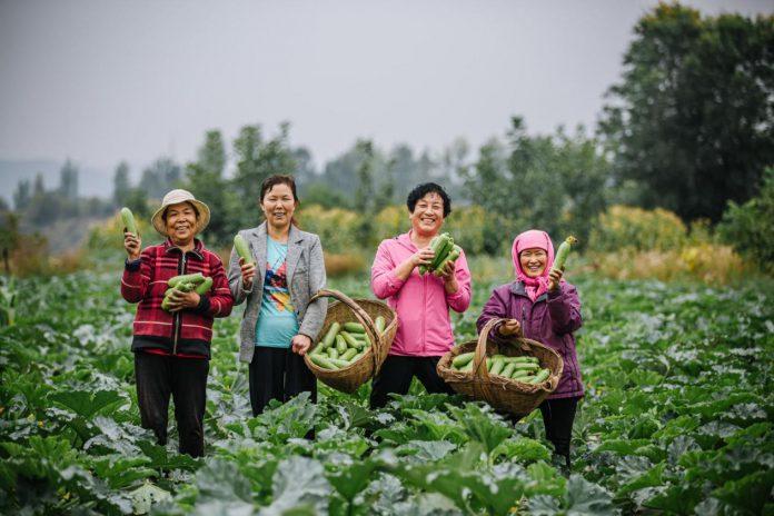 UN Women China Qinghai programme has benefited local women.