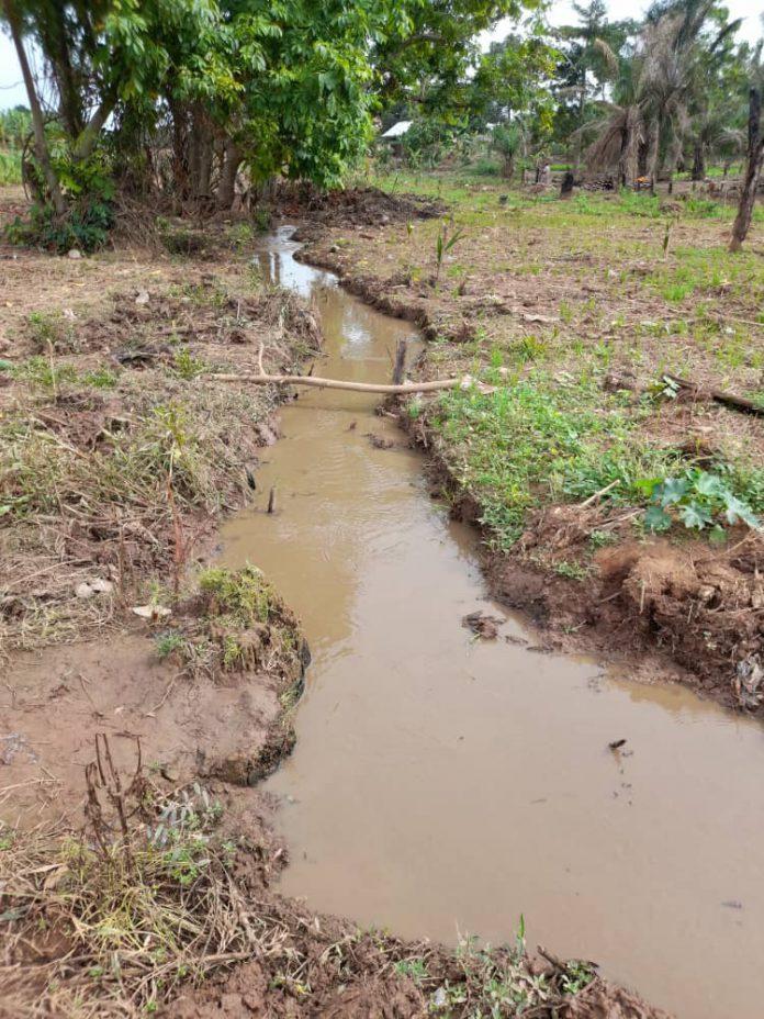 contaminated stream