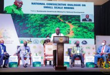 President Akufo-Addo addressing the consultative meeting