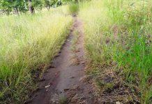 Bongberi-Varempere roads