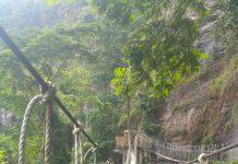 New Amedzofe canopy walkway