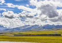 A train runs on the Qinghai-Tibet Railway, the only railway that extends to Tibet from China's inland regions, Aug. 28, 2020. (Photo by Peng Huan/People's Daily Online)