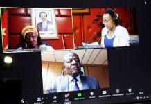 Virtual by update by Shelter Afrique Company Secretary Natasha Koli