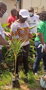 Minister of Communications and Digitalization, Ursula Owusu-Ekuful ready to plant