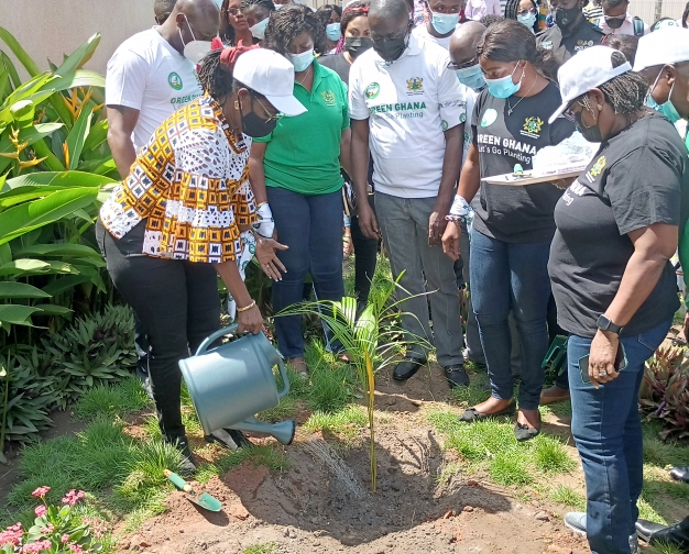 Minister of Communications and Digitalization, Ursula Owusu-Ekuful watering the tree.