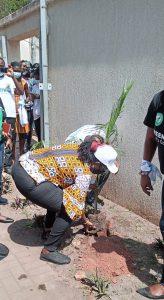 Minister of Communications and Digitalization, Ursula Owusu-Ekuful planting.