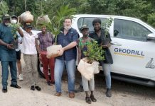 Geodrill to plant trees