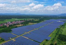 Photo taken on June 12, 2021 shows a photovoltaic power station in Taihe county, Ji'an, east China's Jiangxi province. (Photo by Deng Heping/People's Daily Online)