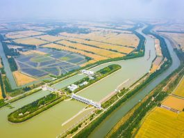 Photo taken on May 29, 2021 shows an aerial view of the golden wheat fields in Zhuhu township, Sihong county, Suqian city, east China's Jiangsu province. (Photo by Zhang Lianhua/People's Daily Online)