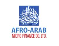 التمويل الأصغر العربي الأفريقي