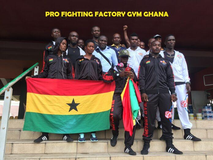 Pro Fighting Factory